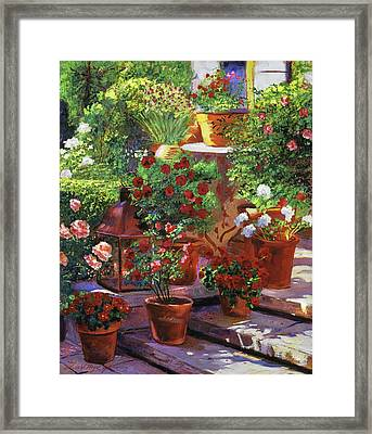 Welcoming Flowers Framed Print by David Lloyd Glover