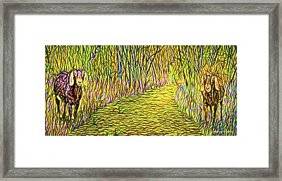 Welcoming Goats Framed Print
