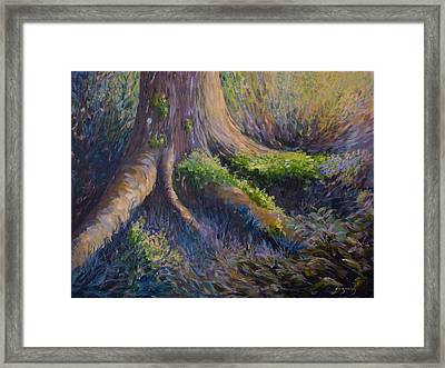 Well Grounded Framed Print by Joanne Smoley