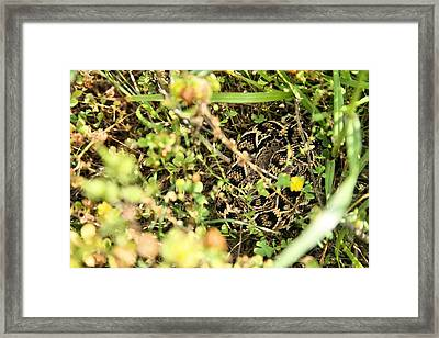 Well Hidden Framed Print