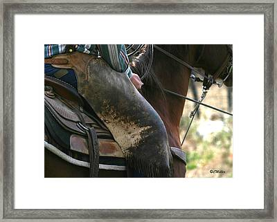 Well Used Chinks.. Framed Print by Carol Miller