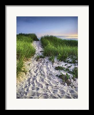 Wellfleet Framed Prints