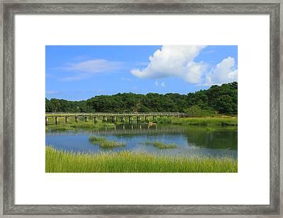 Wellfleet Marsh Cape Cod Framed Print