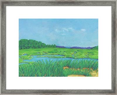 Wellfleet Wetlands Framed Print