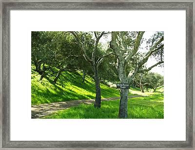 Wells Fargo Trail Framed Print by Jeff Lowe