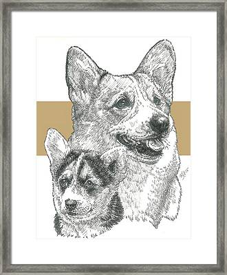 Welsh Corgi Framed Print by Barbara Keith