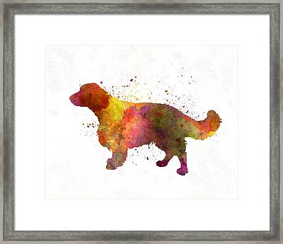 Welsh Springer Spaniel In Watercolor Framed Print by Pablo Romero