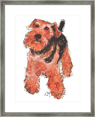 Welsh Terrier Or Schnauzer Watercolor Painting By Kmcelwaine Framed Print