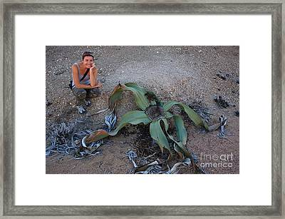 Welwitschia Plant And Woman Framed Print by Francesco Tomasinelli