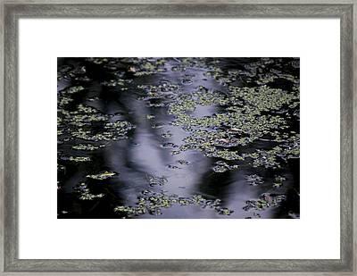 #wemeetinthesilence Framed Print by Becky Furgason