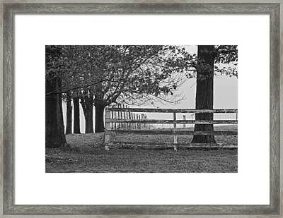 Were You A Bad Oak Framed Print by Michelle Hastings