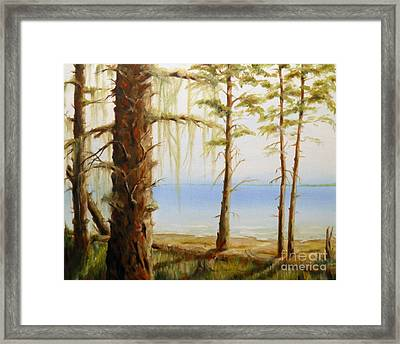 West Coast View Framed Print