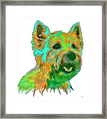 West Highland Terrier Framed Print by Marlene Watson