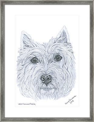 West Highland Terrier Framed Print by Yvonne Johnstone