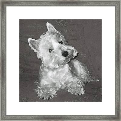 West Highland White Terrier Framed Print by Charmaine Zoe