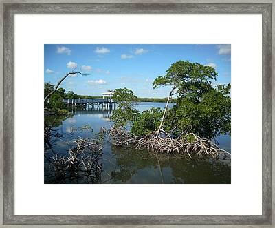 Framed Print featuring the photograph West Lake Park by Artists With Autism Inc
