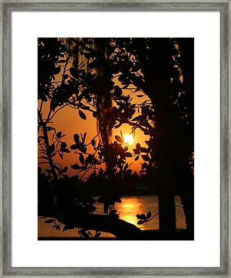 Framed Print featuring the photograph West Palm Beach Sunrise by Diane Merkle