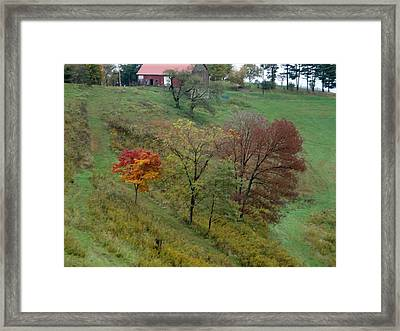 West Virginia Hillside Framed Print by Terry  Wiley