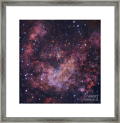 Westerlund 2 Star Cluster In Carina Framed Print by Robert Gendler