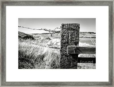 Western Barbed Wire Fence Black And White Framed Print