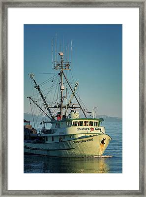 Framed Print featuring the photograph Western King At Breakwater by Randy Hall
