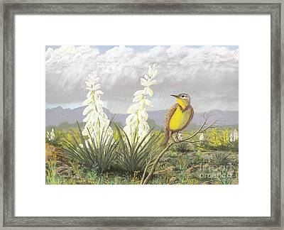 Western Meadowlark Framed Print by Don Lindemann