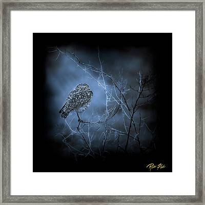 Framed Print featuring the photograph Western Owl Gloom by Rikk Flohr