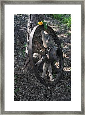 Western Yellow Rose V Framed Print