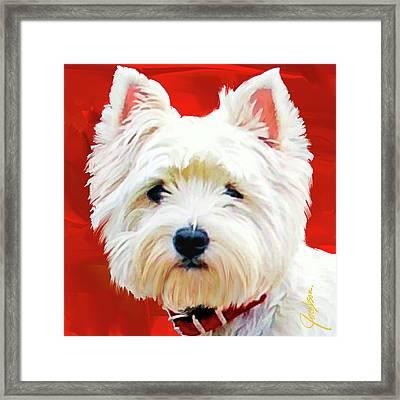 Westie Red Framed Print