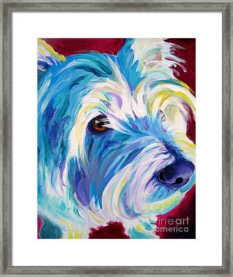 Westie - That Look Framed Print by Alicia VanNoy Call