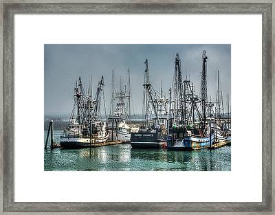 Westport Fishing Fleet - Washington Coast Framed Print by Greg Sigrist