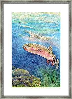Westslope Cutthroat Framed Print by Gale Cochran-Smith