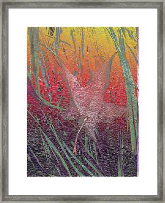 Wet And Wild Autumn Framed Print by Tim Allen