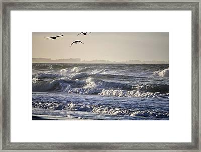 Wet And Wild Framed Print
