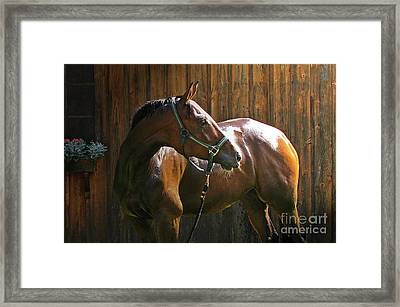 Wet Athlete Framed Print by Deborah Johnson