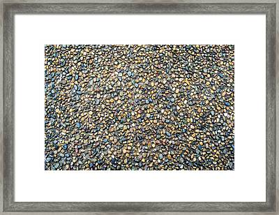 Wet Beach Stones Framed Print