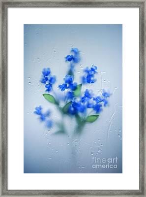 Wet Dream Framed Print by Svetlana Sewell