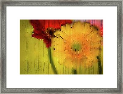 Wet Glass Flowers Framed Print