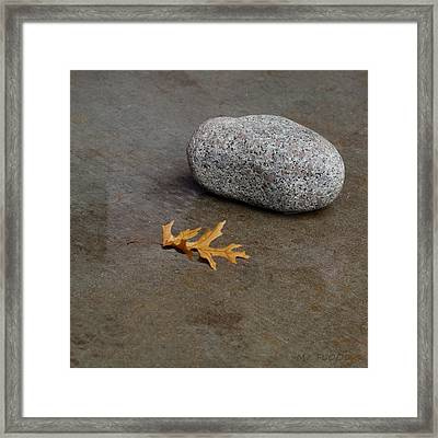 Wet Leaf And Wet Rock Framed Print by Michael Flood