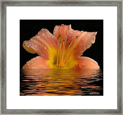 Framed Print featuring the photograph Wet Lilly by Rick Friedle