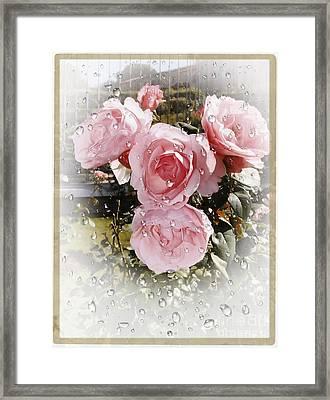 Wet Pink Roses Framed Print