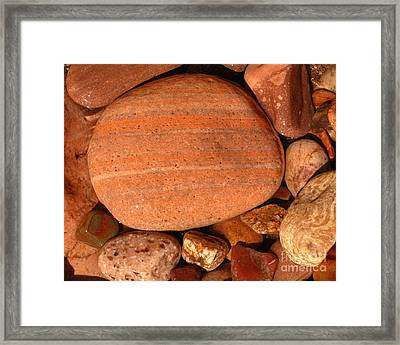 Wet River Rocks Along Salt River Shore Framed Print by Max Allen