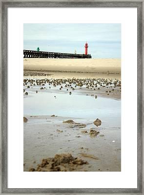 Wet Sands Framed Print by Jez C Self