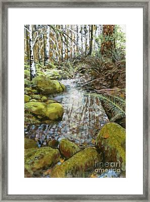 Wet Spot In Woods Framed Print