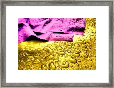 Wet Willy Framed Print