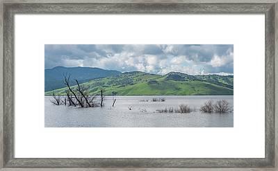 Wet Winter  Framed Print by David A Litman