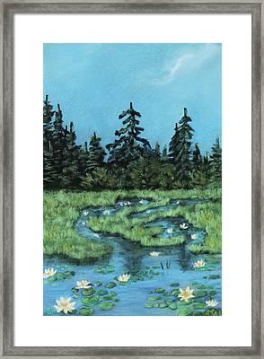 Wetland - Algonquin Park Framed Print by Anastasiya Malakhova