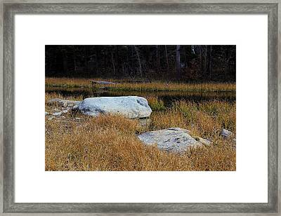 Wetland Eastern Sierra Nevada Framed Print