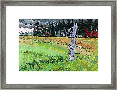 Wetland Sentinel Framed Print