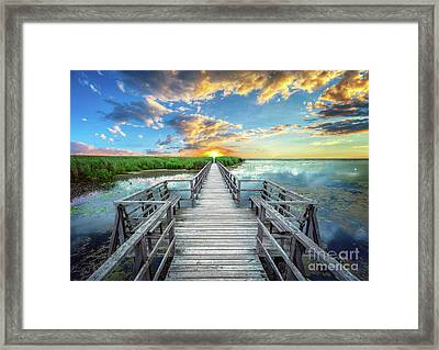 Wetland Marsh Sunrise Treasure Coast Florida Boardwalk A1 Framed Print